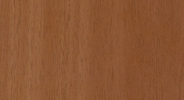 Walnut-Exclusive-SWI MFC 10 0009 big